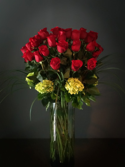 Classic Roses